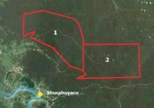 Floresta na regiao amazonica superior do Peru